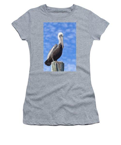 Florida Brown Pelican Women's T-Shirt