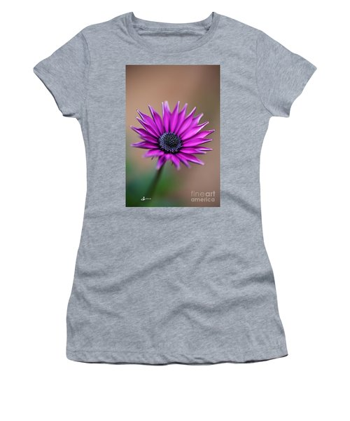 Flower-daisy-purple Women's T-Shirt