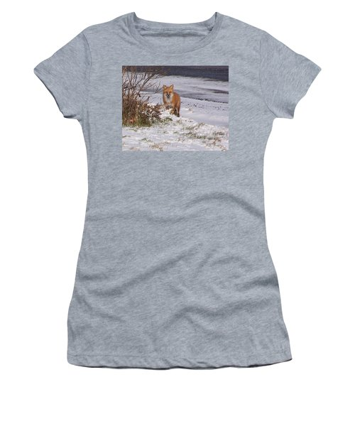 Fox In My Yard Women's T-Shirt (Athletic Fit)