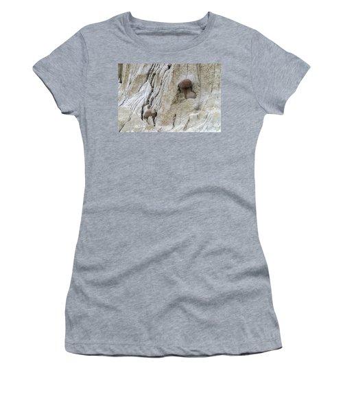 Geologic Concretion, North Dakota Women's T-Shirt