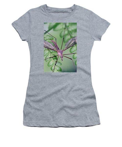 Ghost On A Fern Women's T-Shirt