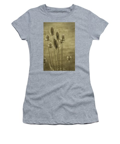 Golden Thistles Women's T-Shirt