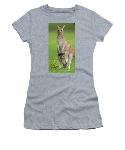 Grey Kangaroo And Joey  Women's T-Shirt