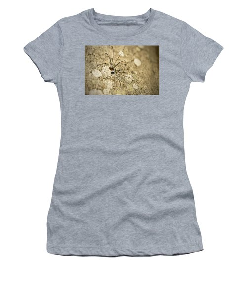 Harvestman Spider Women's T-Shirt (Junior Cut) by Chevy Fleet