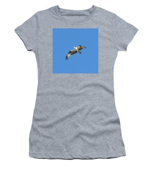 Hawk In Flight Women's T-Shirt (Athletic Fit)