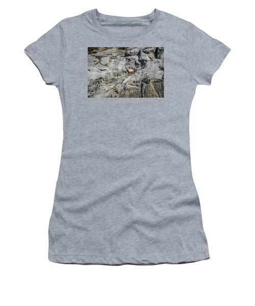 Big Horn Sheep Coming Down The Mountain  Women's T-Shirt