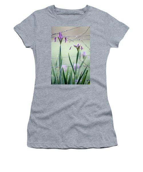 Irises2 Women's T-Shirt