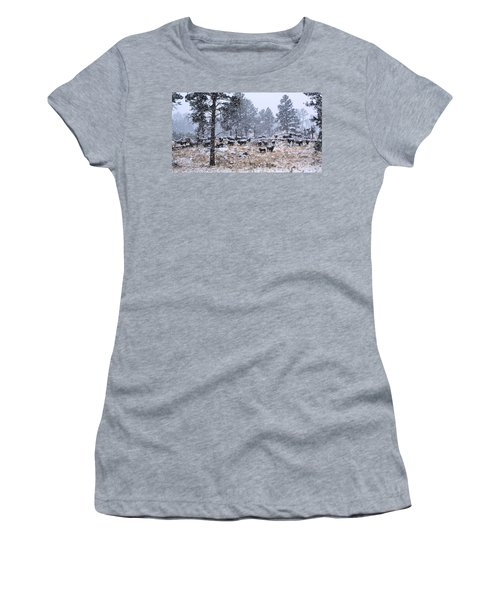 January Snow Women's T-Shirt (Athletic Fit)