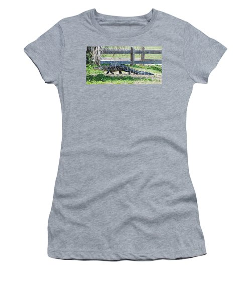 A Stroll Through The Daisies Women's T-Shirt