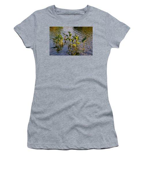 Lillies In Evening Glory Women's T-Shirt