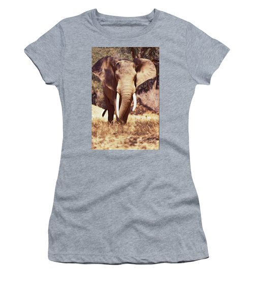 Mana Pools Elephant Women's T-Shirt
