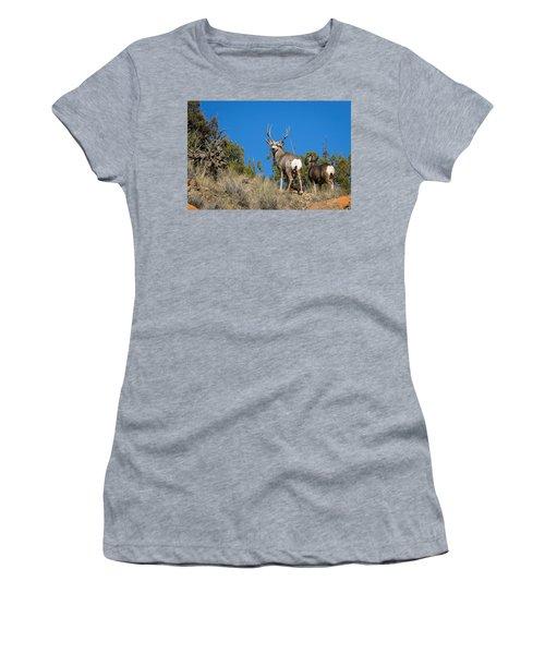 Mule Deer Buck Women's T-Shirt (Athletic Fit)
