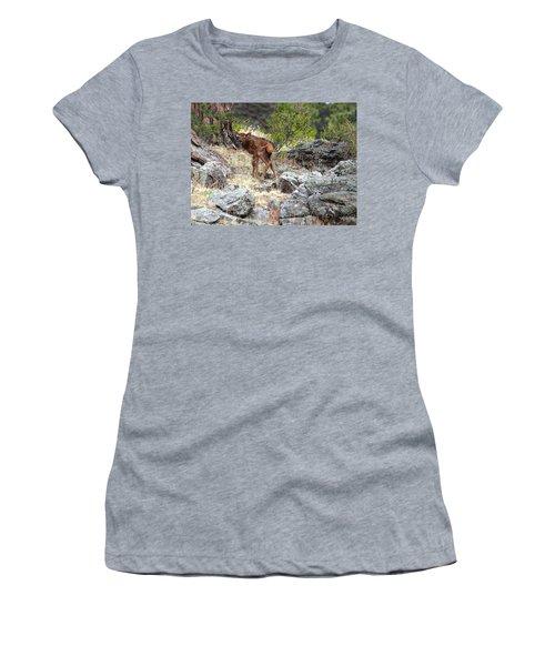 Newborn Elk Calf Women's T-Shirt