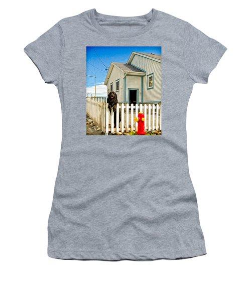 Newfoundland Dog In Newfoundland Women's T-Shirt