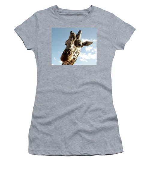 Out Of Africa  Reticulated Giraffe Women's T-Shirt