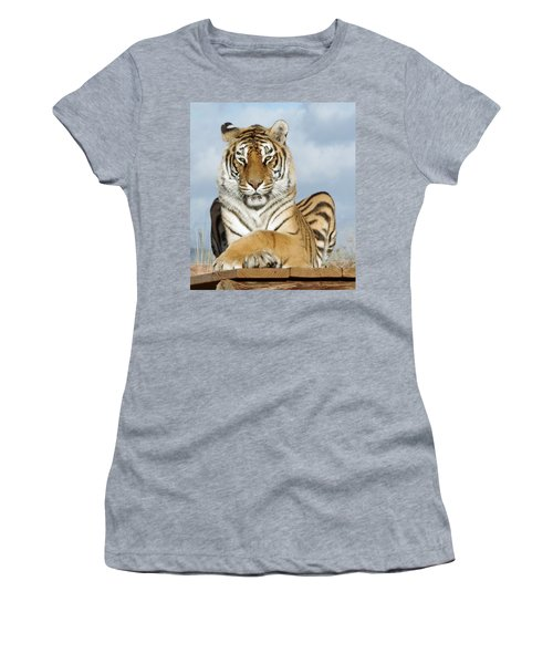 Out Of Africa Tiger 3 Women's T-Shirt
