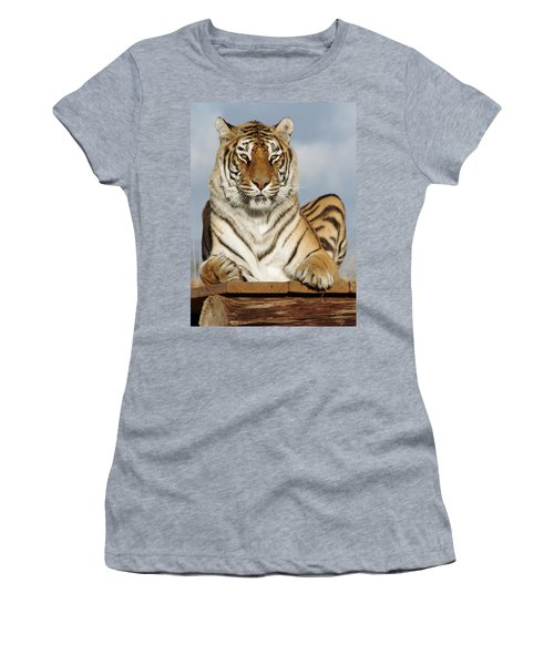Out Of Africa Tiger 4 Women's T-Shirt