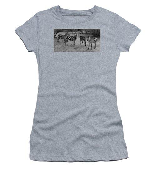 Out Of Africa  Zebras Women's T-Shirt