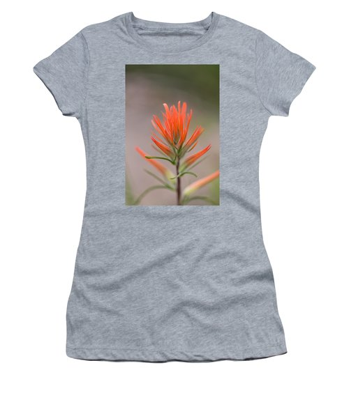Painterly Paintbrush Women's T-Shirt (Athletic Fit)