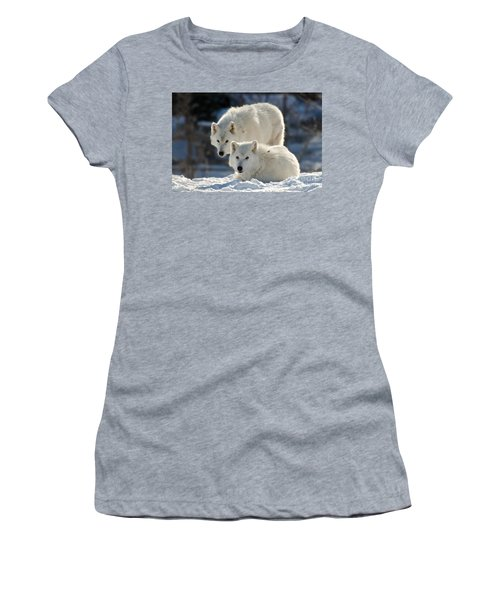 Pair Of Arctic Wolves Women's T-Shirt