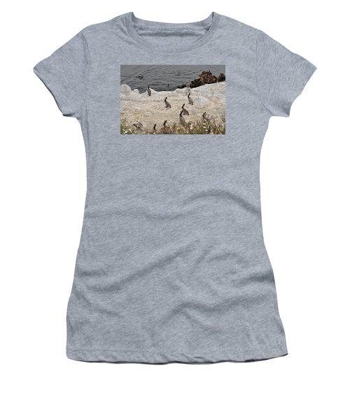 Pelicans Seals N Daisies  Women's T-Shirt