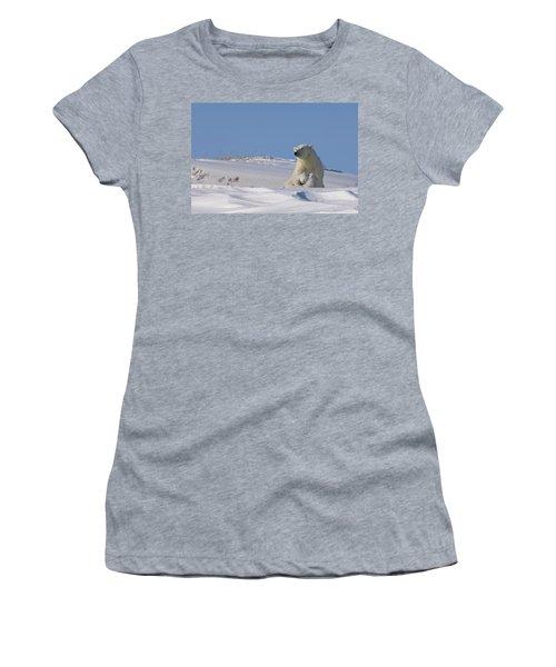 Polar Bear Sits Outside Her Den Women's T-Shirt