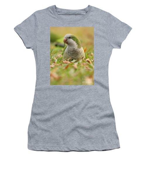 Quaker Parrot #3 Women's T-Shirt (Athletic Fit)