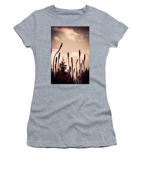 Flowers Reaching For The Sky Women's T-Shirt (Athletic Fit)