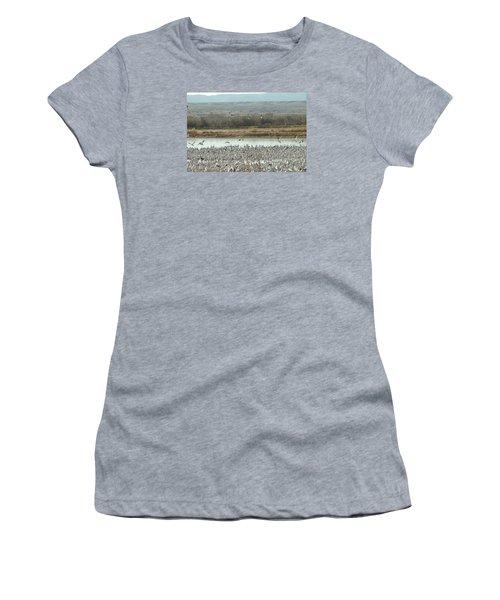 Refuge View  Women's T-Shirt (Junior Cut) by James Gay