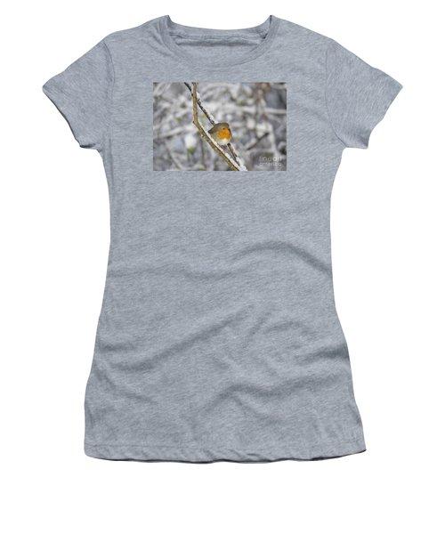 Robin At Winter Women's T-Shirt
