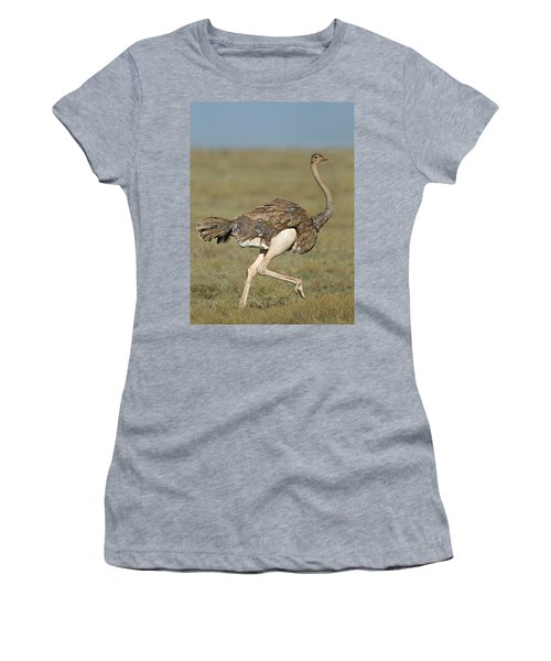 Side Profile Of An Ostrich Running Women's T-Shirt (Athletic Fit)