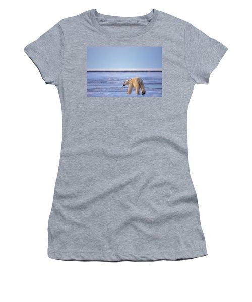 Skinny Hungry Polar Bear Walking Women's T-Shirt