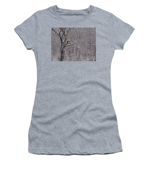 Snow In The Trees At Bulls Island Women's T-Shirt