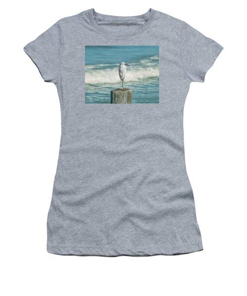 Snowy Egret - Naples Beach Women's T-Shirt
