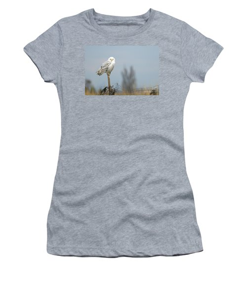 Snowy Owl On Fence Post 2 Women's T-Shirt