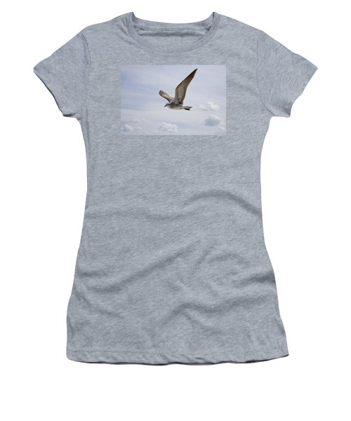 Soaring Gull Women's T-Shirt