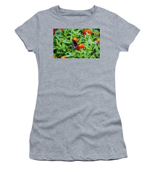 Spicebush Swallowtail Women's T-Shirt (Athletic Fit)