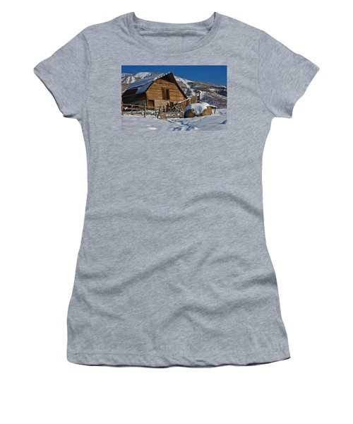 Steamboat Barn Women's T-Shirt (Junior Cut) by Don Schwartz
