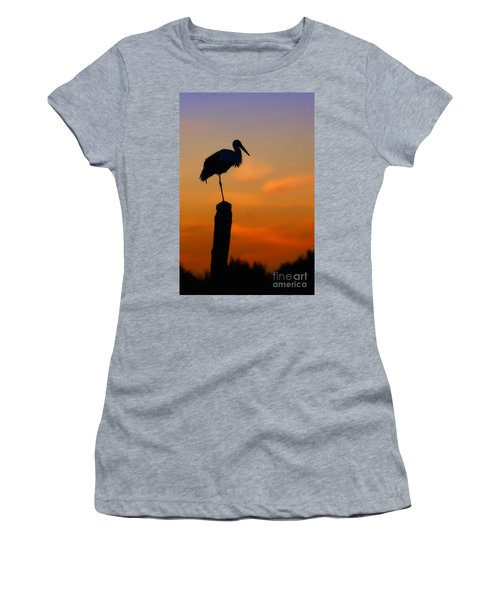 Storck In Silhouette High On A Pole Women's T-Shirt (Athletic Fit)