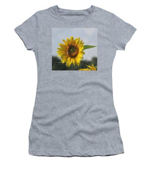 Sunflower 5 Women's T-Shirt