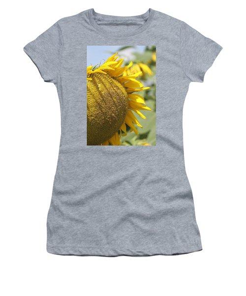 Sunflower 8 Women's T-Shirt