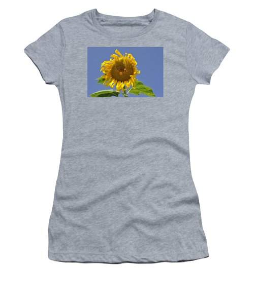 Sunflower At Latrun Women's T-Shirt