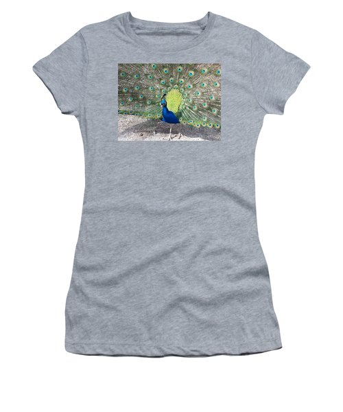 Women's T-Shirt (Junior Cut) featuring the photograph Sunny Peancock by Caryl J Bohn
