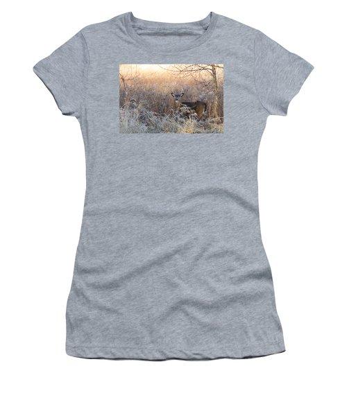 Sunshine Deer Women's T-Shirt