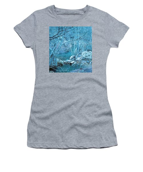 Sycamores And River Women's T-Shirt
