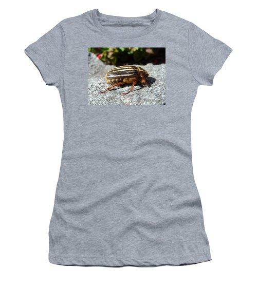 Ten-lined June Beetle Profile Women's T-Shirt (Athletic Fit)