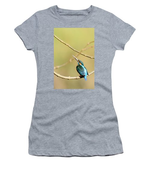 The Common Kingfisher Women's T-Shirt (Athletic Fit)