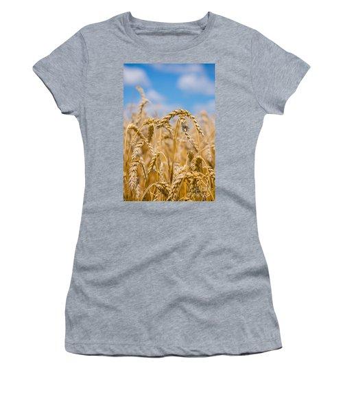 Wheat Women's T-Shirt (Junior Cut) by Cheryl Baxter