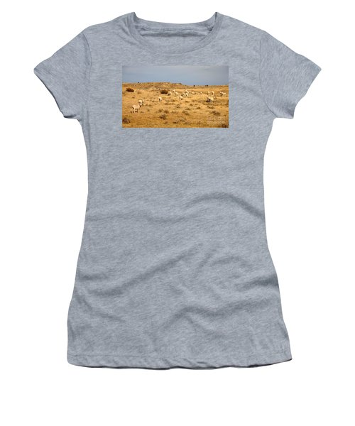 Wool You Sheep With Me Women's T-Shirt
