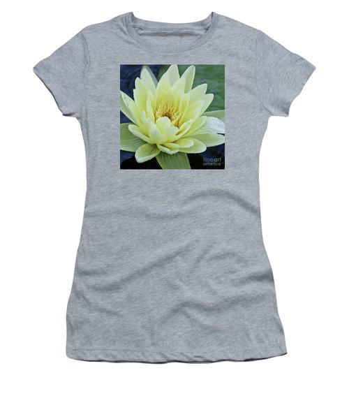 Yellow Water Lily Nymphaea Women's T-Shirt